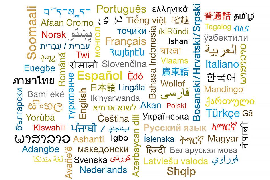 medios interkulturelles dolmetschen stadt zrich - Bewerbung Als Dolmetscher